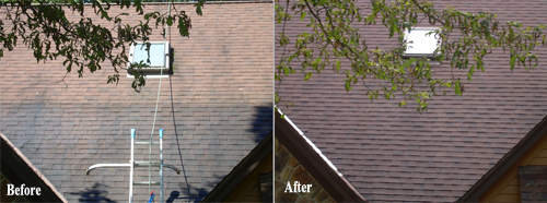 Roof cleaning services in State College PA